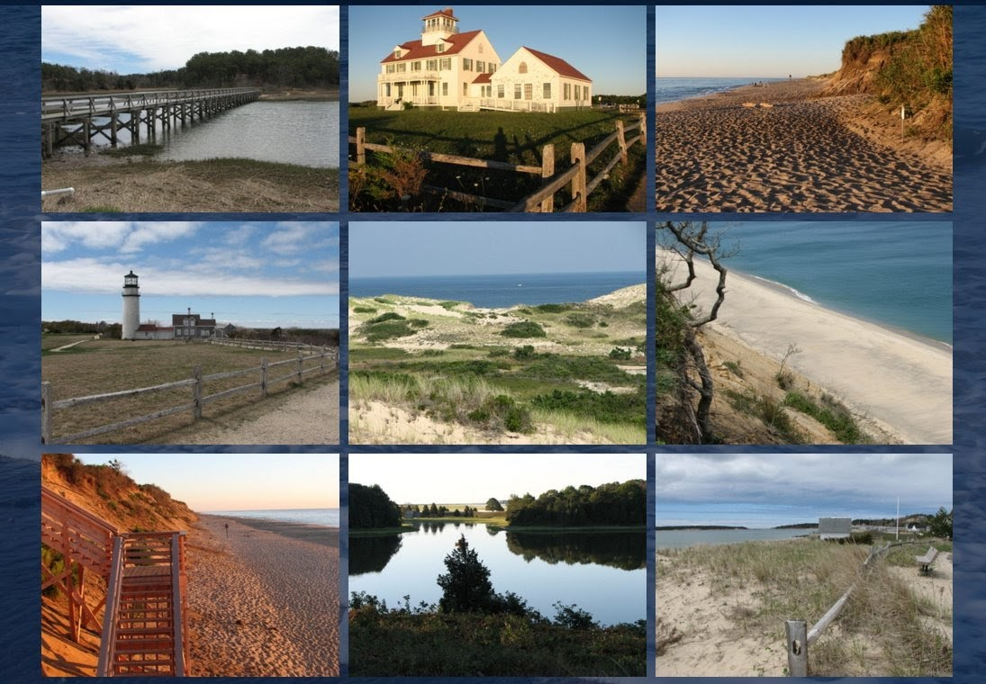 Views of Cape Cod
